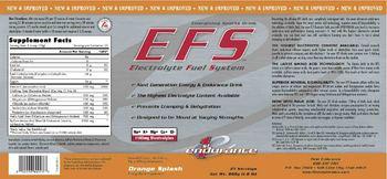 1st Endurance EFS Electrolyte Fuel System Orange Splash - energy drink supplement
