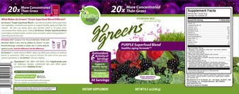 Healthy To Go! Go Greens Purple Superfood Blend Maqui Blackberry - supplement