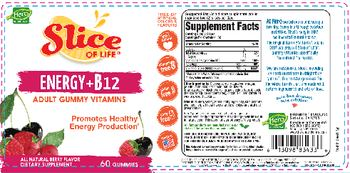 Hero Nutritionals Slice Of Life Energy+B12 All Natural Berry Flavor - supplement
