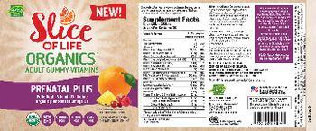 Hero Nutritionals Slice Of Life Organics Prenatal Plus - supplement